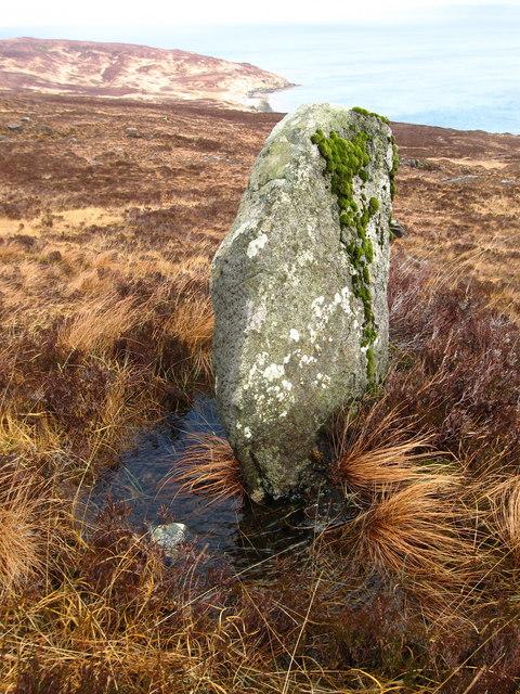 Standing Stone?