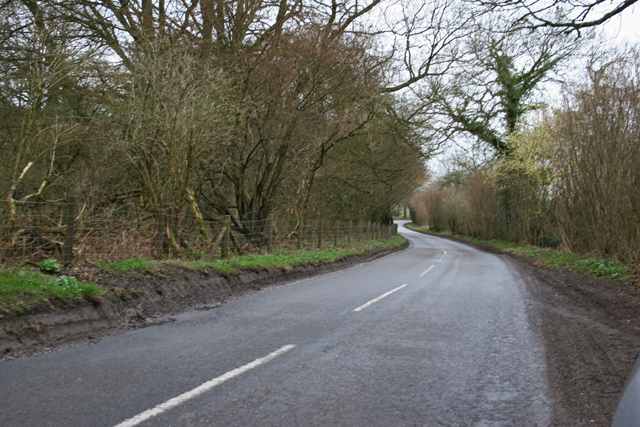 Road near Dummer Grange Farm