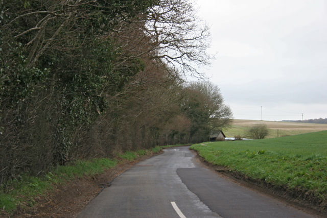 Road near woodland