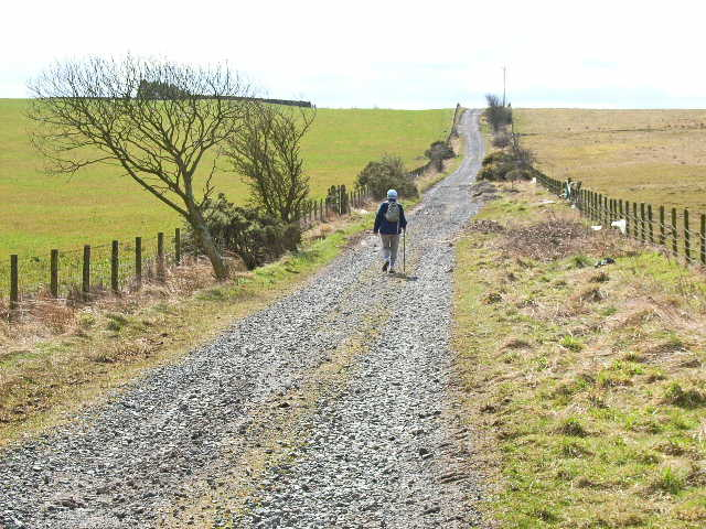 Rough road from East Hedleyhope to Sunniside