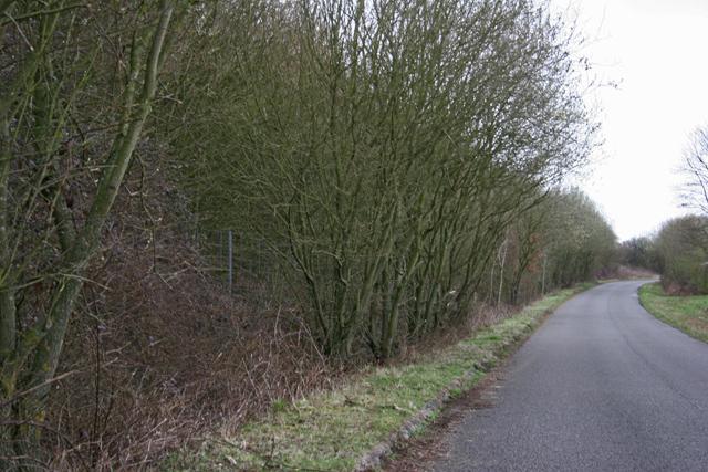 Road leaving Popham