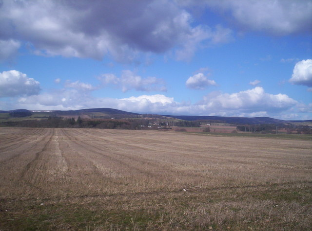 Field with Angus Hills Behind