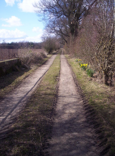Track from Balgarrock to Nowhere