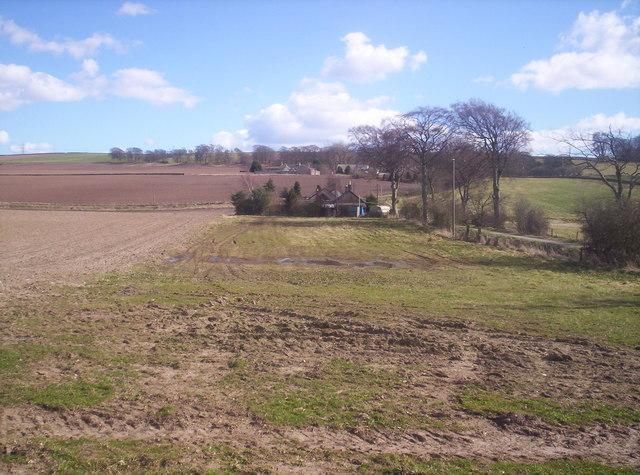 Looking Towards Damside from Balgarrock