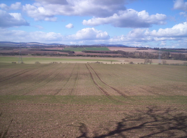 Field With Angus Hills in the Distance