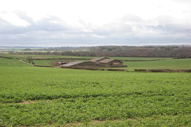 Lone Farm near Woodmancott