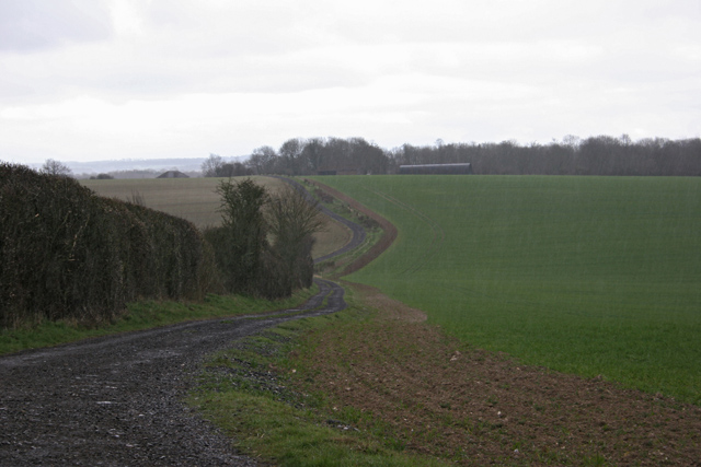 Trackway near Bugmore Hill
