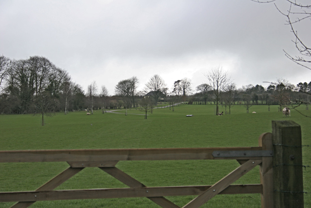 Pasture near Armsworth Hill Farm