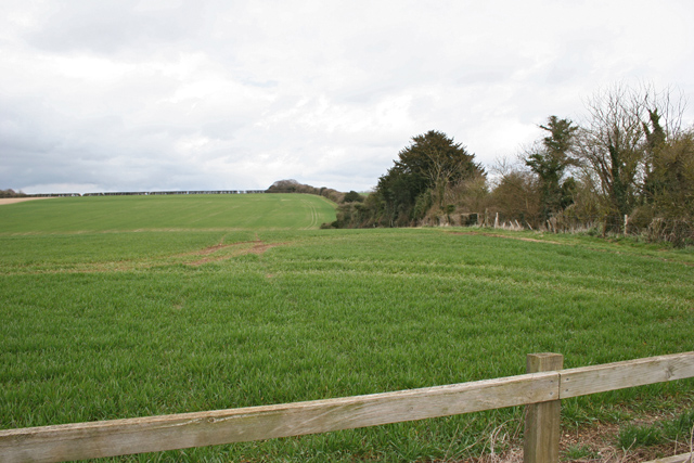 Farmland between Preston Candover and Lower Wield