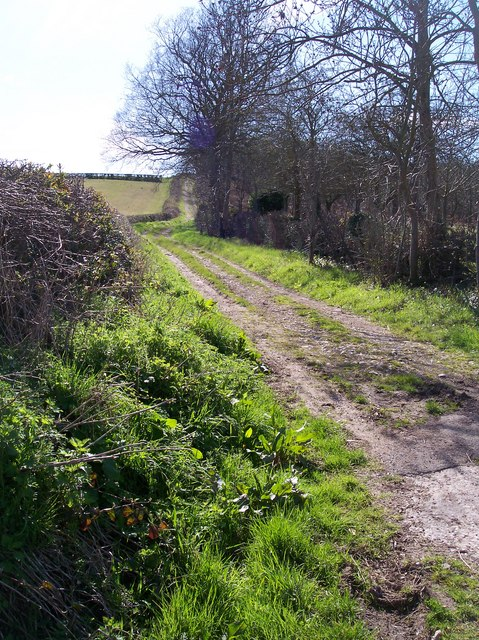 Old Road from Sutton Lakes to Sutton St Nicholas