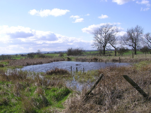 South Walmire  Pond
