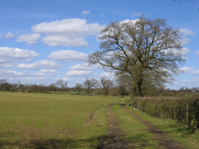 View from Watery Lane