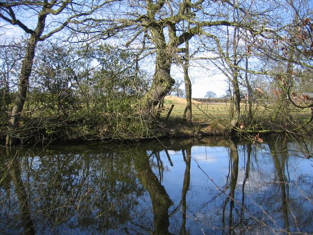Pool at Highfield Farm
