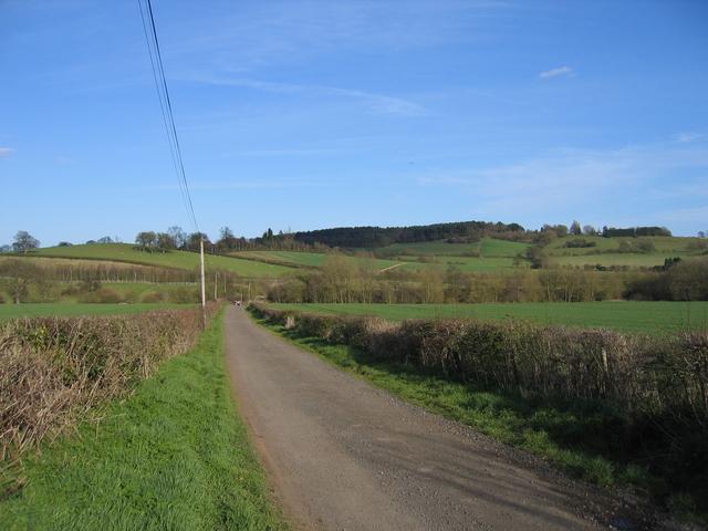 Bridleway and drive the Alvechurch Lodge Farm