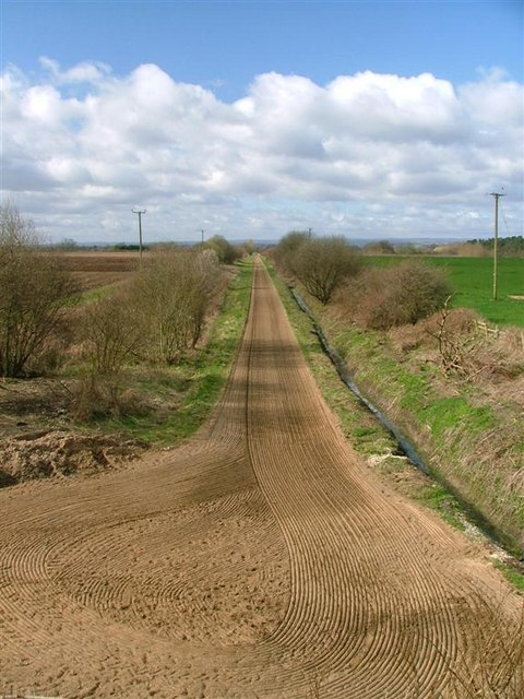Gallop, Near Maunby