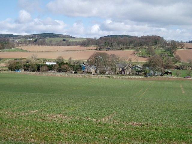 Farmland near Lauder
