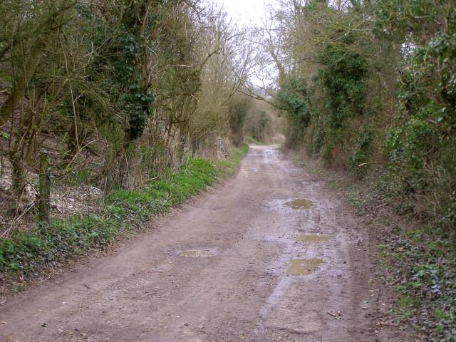 Track alongside Muckleford Nature Reserve