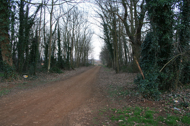 Sewstern Lane near Woolsthorpe