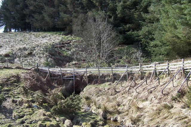 A farm track bridge over the burn with a forestry plantation behind
