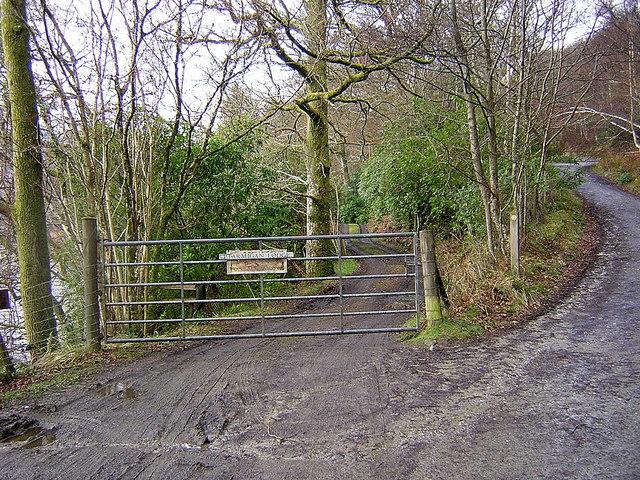 Track to Ptarmigan Lodge