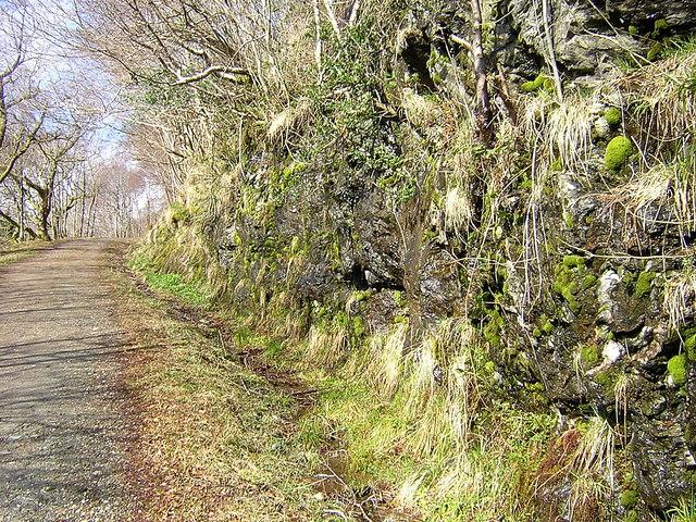 Rock Cutting on West Highland Way