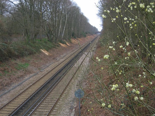 Railway between Penshurst and Leigh Stations