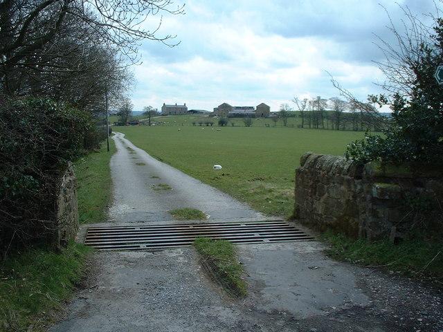 Farm lane and public footpath