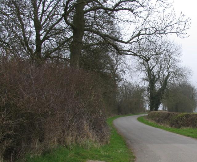 Burton Overy Lane