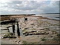 TQ9894 : Brankfleet Spit by John Myers