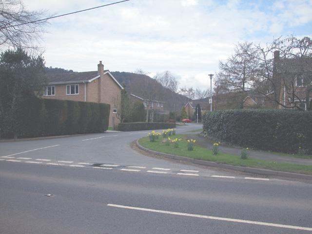 Modern Bulkeley