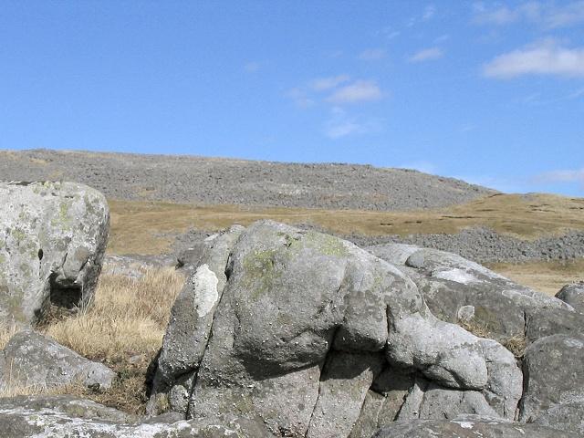 Southwest slope of Foel Fraith