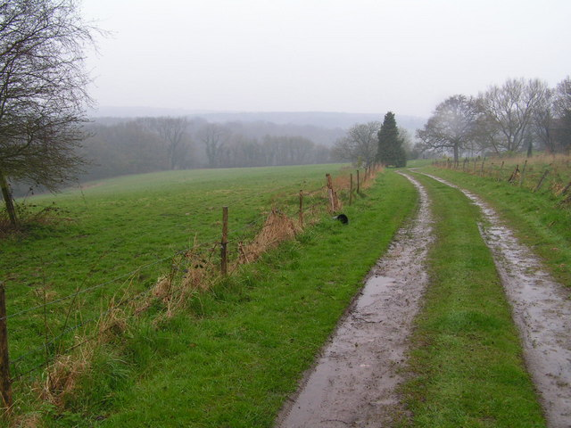 Farm track through the weald