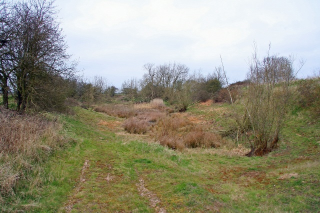 Horse Pool, near Collingham