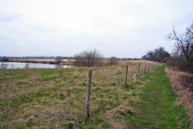Silt lagoons near Collingham