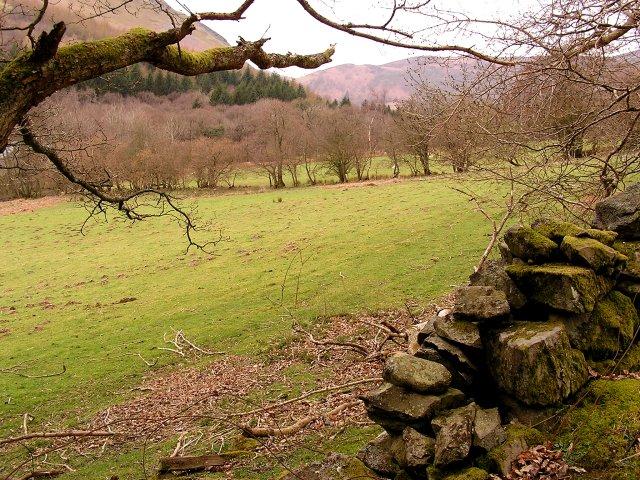 Farmland nr Llanwrthwl
