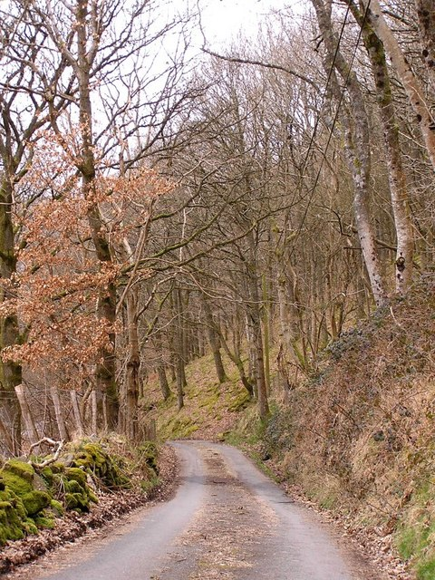 Country Lane nr Llanwrthwl