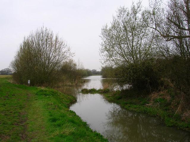 Anglers Pond, Ripe