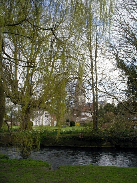 River Avon and Salisbury Cathedral
