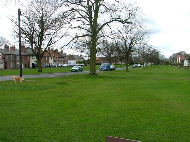 Romanby Green