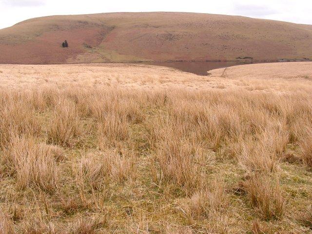 Towards Craig Goch Reservoir