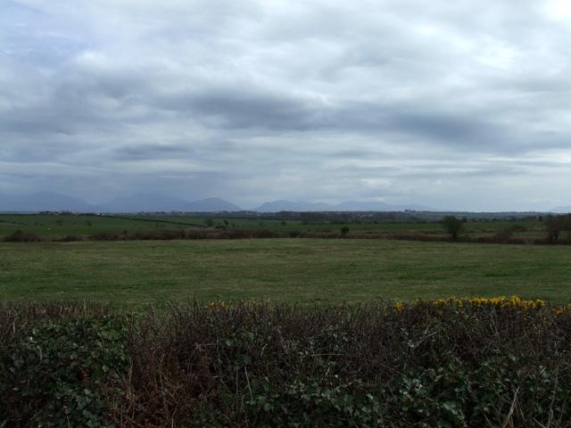 Fields near Ty Gwyn