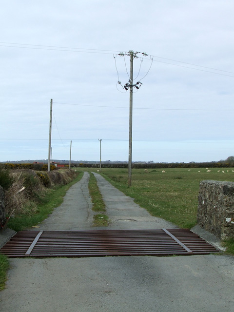 Cattle grid on farm road