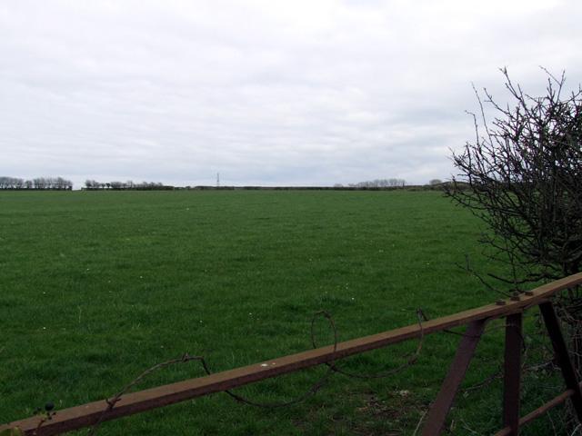 Field near to Angora Farm