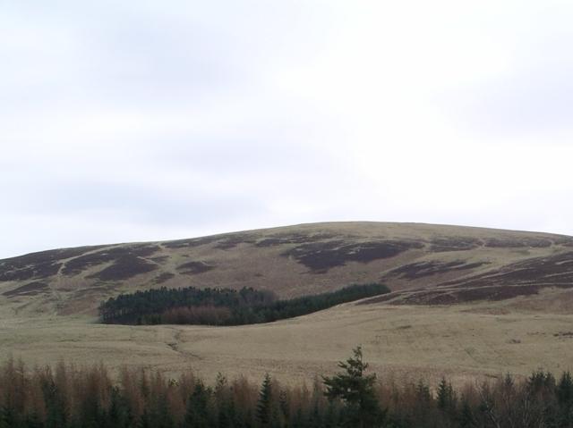 Plantation, Broadhill