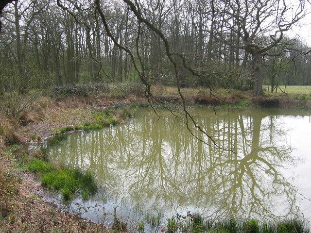 Pond near Bough Beech Reservoir