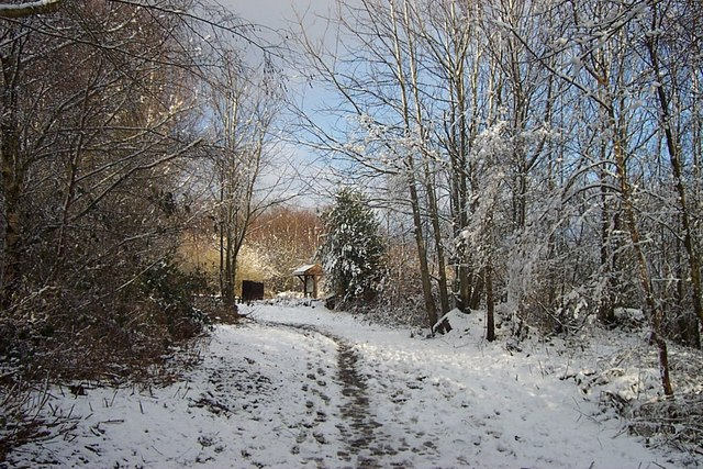 Woodland footpath to viewing point at top of York's Hill