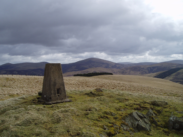 The Summit of Lamington Hill