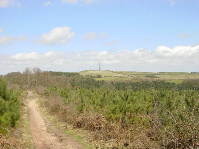 The Sandstone Trail, Primrose Hill