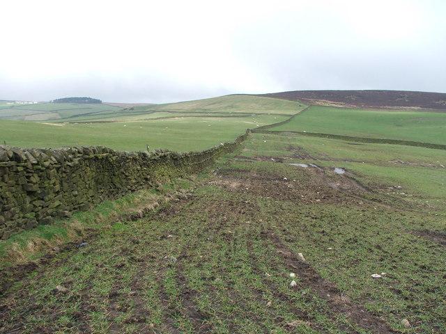 Draughton Moor and farmland.