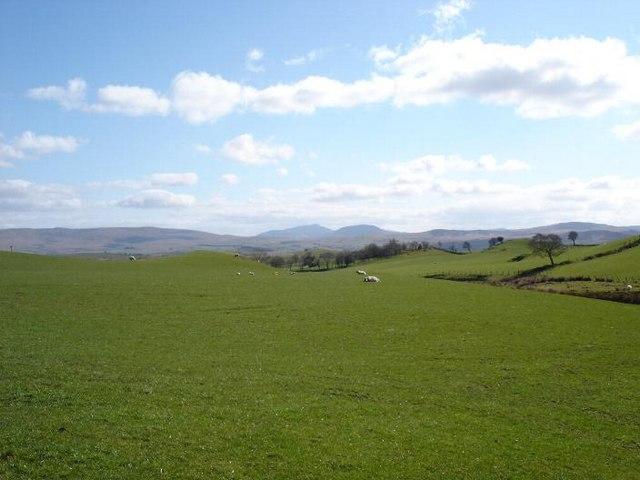 Nebo fields